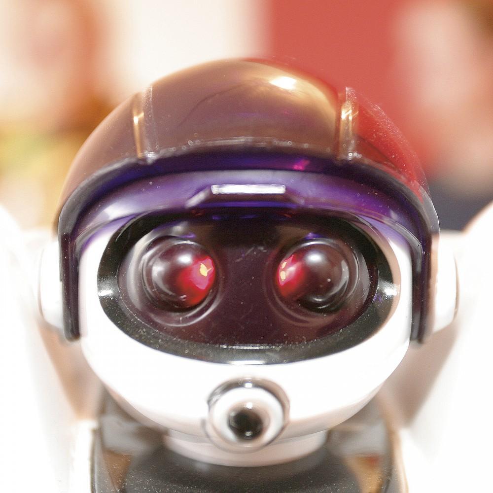 Roboter3618